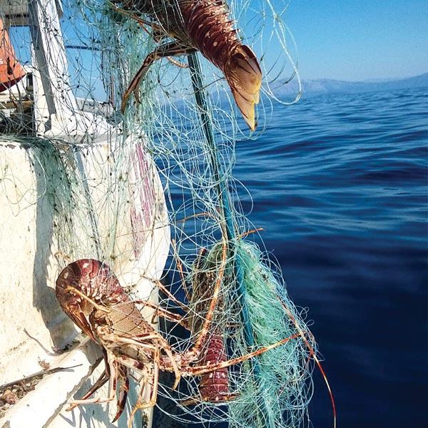 ribarstvo3