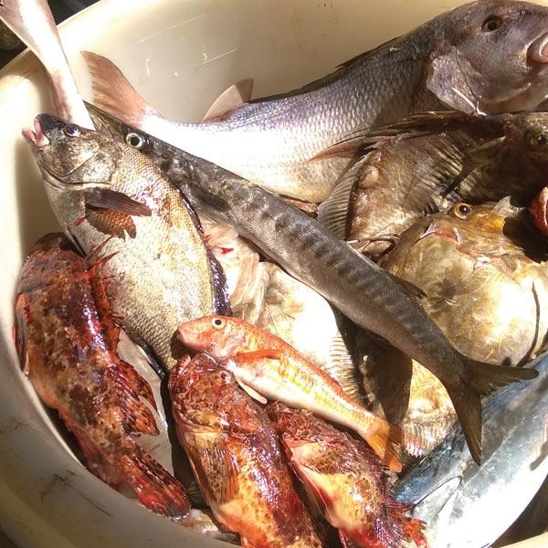 ribarstvo6